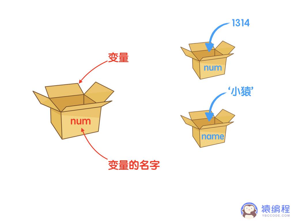 基础语法-变量